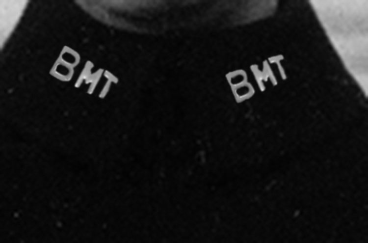 BMT on Collar  copy.jpg